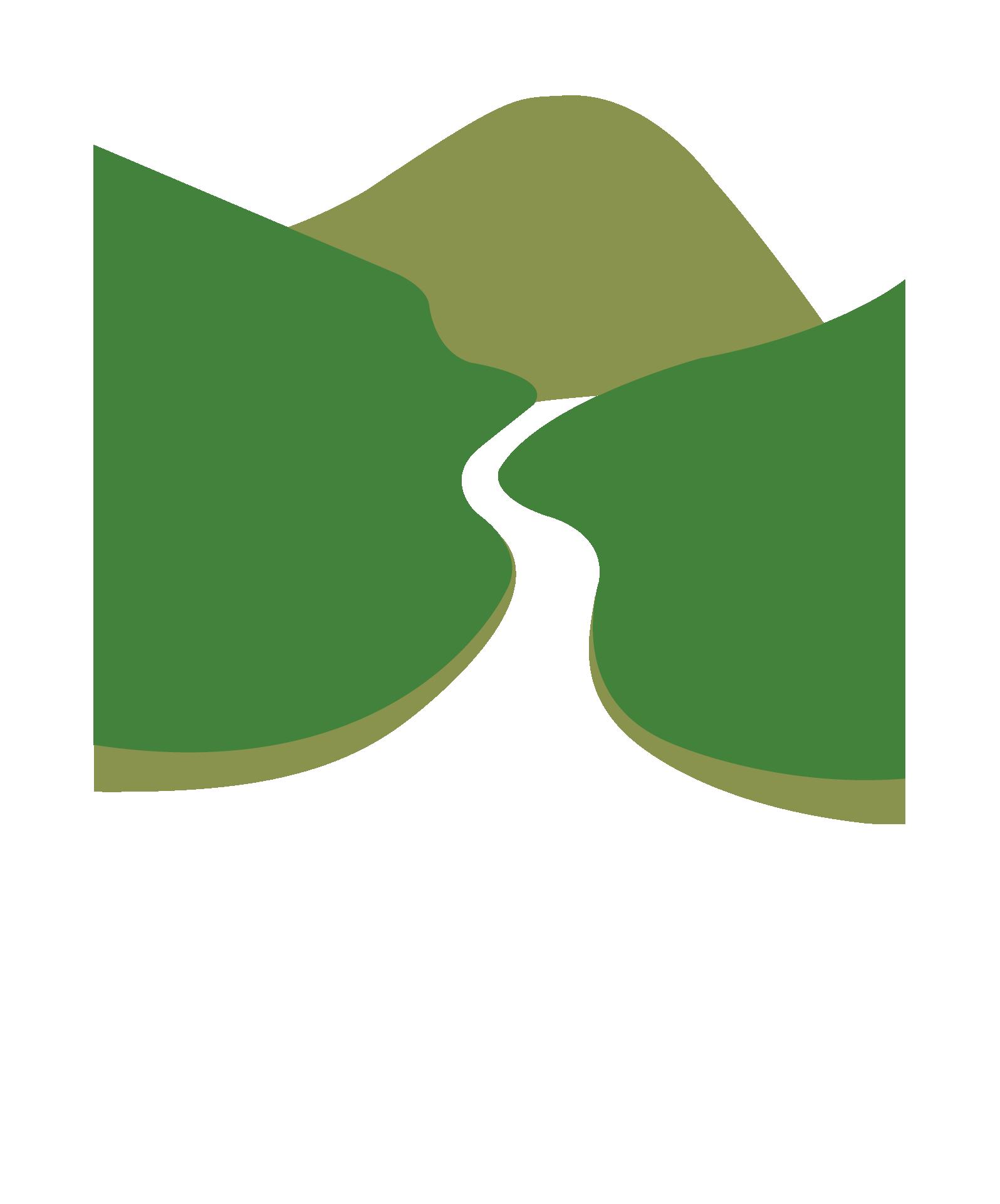 AVV Logo FINAL white